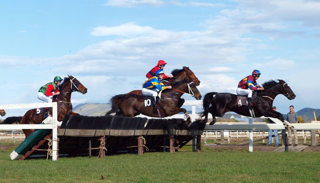 Grand National Betting Sites