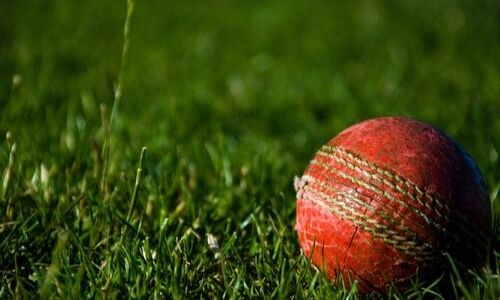 Best Betting Sites for Cricket