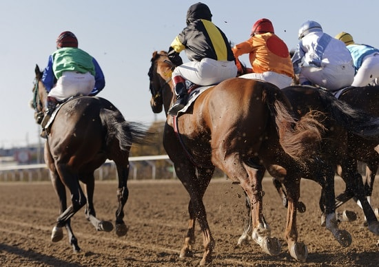 Best Grand National betting sites