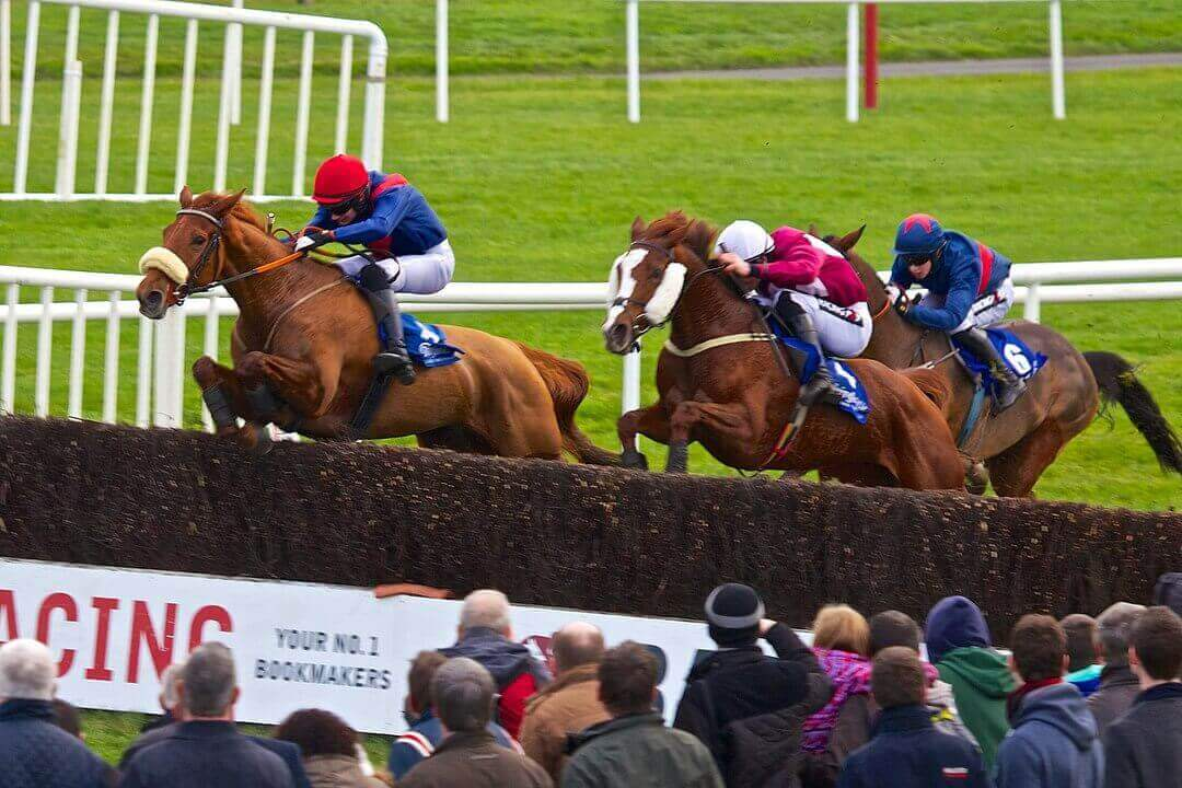 betting offers horse racing