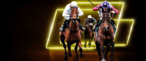 Parimatch horse racing welcome offer