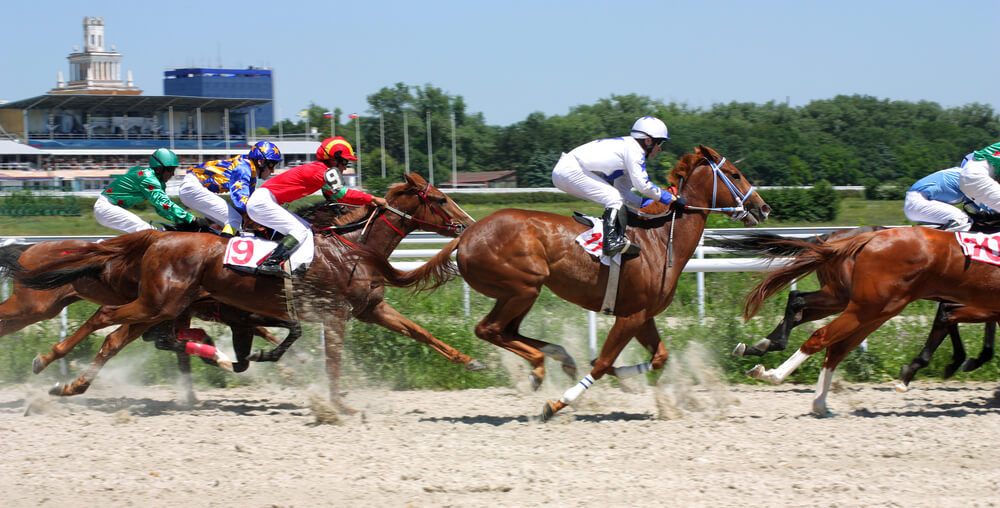 horse racing betting offer